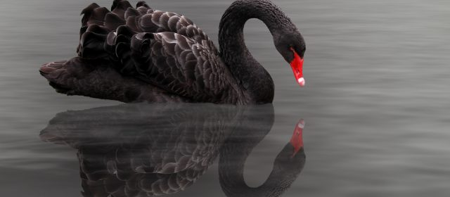 Bigger black swan events